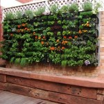 Vertical Small Space Garden Ideas Gallery