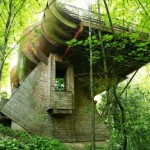 What Organic Architecture Franklin Lloyd Wright