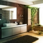 Zen Bathroom Pictures Themes And Decorating Ideas Yupiu