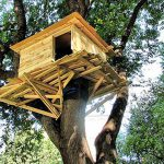 Appealing Treehouse Designs Kids Iimajackrussell Garages Simple