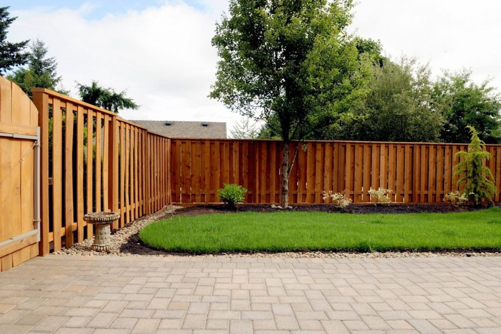 Backyard Fence Ideas Keep Your Privacy