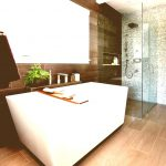 Bathroom Decorating Accessories Ideas Bedroom Doorless Walk Shower Room