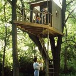 Cool Treehouses Always Wanted