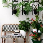 Creative Ways Ate Your Home Plants Diy