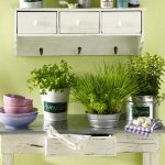 Decorate Kitchen Green Indoor Plants Save