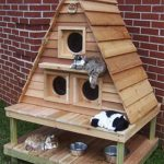 Diy Pallet Furniture Your Cats Pallets