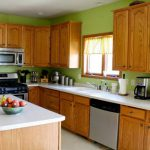 Green Kitchens Cabinets Kitchen