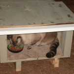 Green Thinking Average Joe Blog Archive Stray Cat House Reused Wood