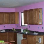 Houses Painted Using Sadolin Paints