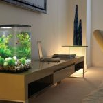 Improve Your Home Modern Fish