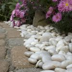 Landscaping Ideas White Rock