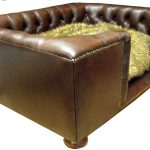 Large Dog Sofa Bed Design Ideas Extra Beds Couches