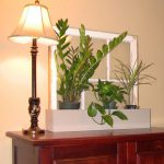 Living Room Plants Decoration Ideas