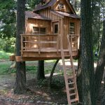 Modern Backyard Tree House Photos Facebook Tumblr Pinterest