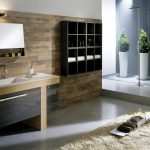 Modern Bathroom Cor Features Designs