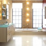 Modern Bathroom Designs Schmidt House