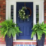 Potted Plants Front Door