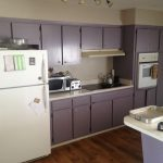 Purple Painted Kitchen Cabinets