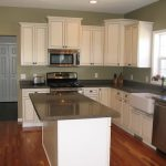 Real Homes Sage Green Kitchen Ellen Kennon Edgewood