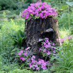Recycling Tree Stumps Yard Decorations Remove Naturally