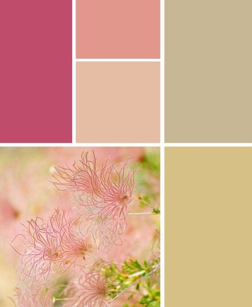 Shabby Chic Color Palette Think Would Nice Tumblr