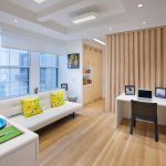 Staggering Studio Apartment Decorating Budget Ideas Living