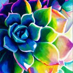Supplication Succulent Colorful Rainbow Spiritual Vivid