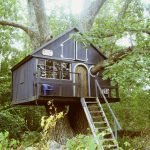 Tiny Treehouse House