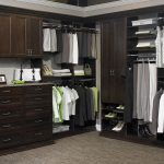 Tips Tricks Best Walk Closet Designs Furniture Design