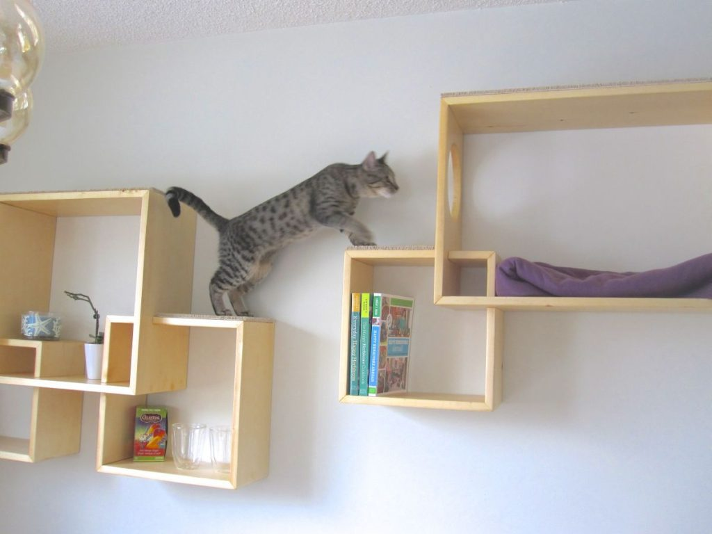 Wall Shelves Playgorund Cats Home Decorating Trends