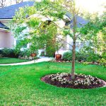 Wonderful Simple Front Garden Ideas Green Grass Great Patio